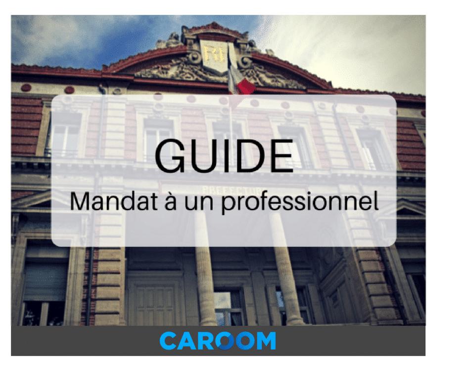 Mandat D Immatriculation A Un Professionnel 13757 Le Guide Complet